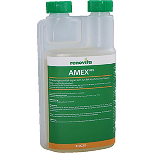 Amex Rex Image