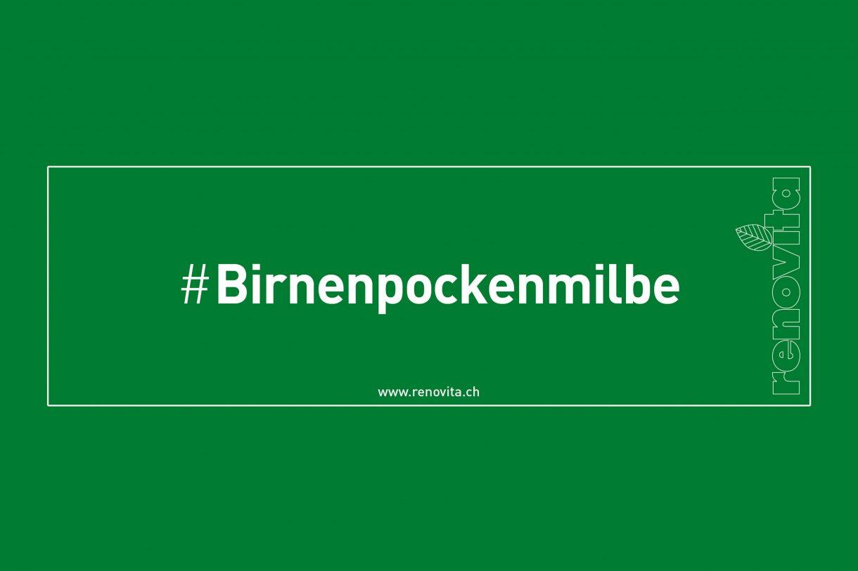#Birnenpockenmilbe