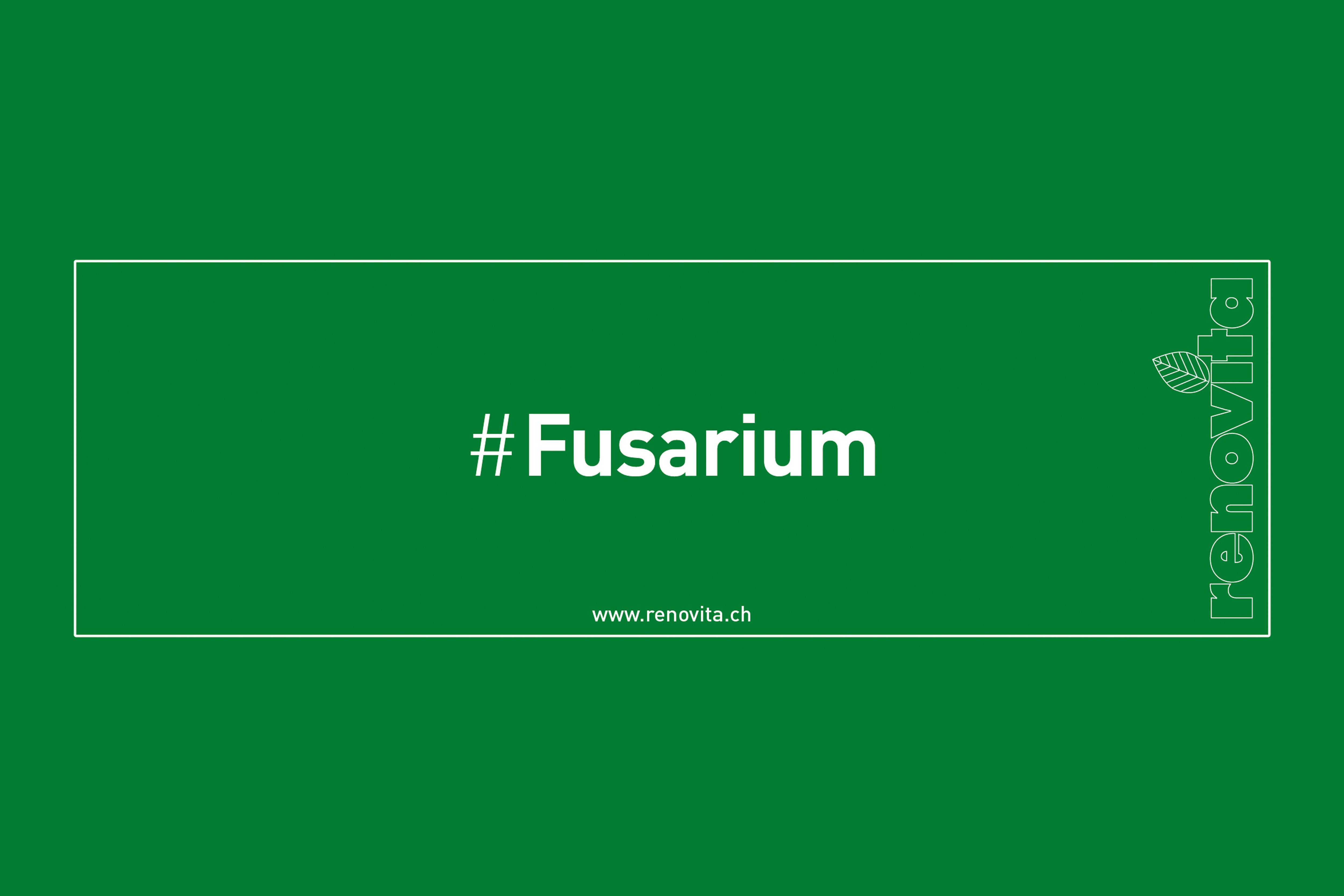#Fusarium