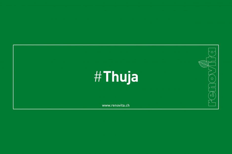 #Thuja